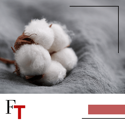 Fashion Trends and Style - Sustainable fashion - Cotton